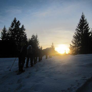 """""""Eis und Schnee im Januar…"""""""