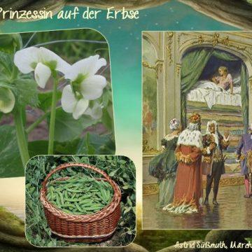 """Vortrag """"Märchenpflanzen"""""""