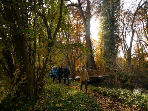 Herbstliche Kräuterentdeckungen im Botanischen Garten Augsburg.